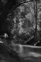 Peaceful Creek by greenwalled1