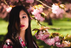 ~ Hanami ~ by MaelstromPhotography