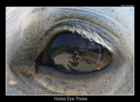 Horse Eye Three by UnUnPentium115