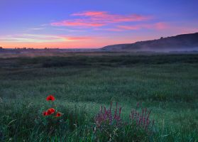 Sunrise over the field by lica20