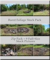 Burnt Foliage Stock Pack by WDWParksGal-Stock