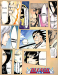 BLeaCH Captains...... by BL-ea-CH