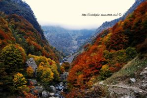 Autunno in val de l'aser 2 by WelshGlue