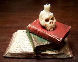 Skull and books by martinorona