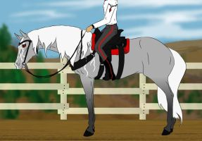 Silver's Show by Everland-Stables