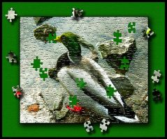 Sitting Duck Jigsaw by x-Emma-Billi-x
