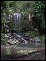 Curtis Falls, Mt Tamborine 1 by jane-mirage