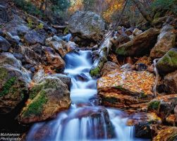 The Autumn Stream on the Fork by mjohanson