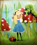 Alice in wonderland by solocosmo
