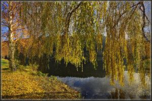 The beauty of autumn by Wetterlage