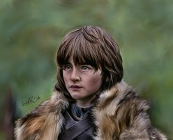 Game of Thrones - Bran by DaaRia