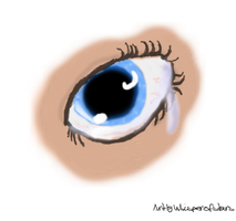 Human Eye... by whisperofstars