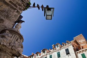 Pigeons of Dubrovnik by parallel-pam