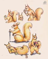Squirrels by DekabristMouse