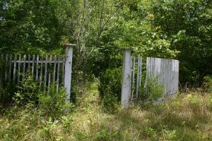 Old Garden Fence Entrance 003 by poeticthnkr