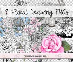 Floral Drawing PNGs by LadyComma
