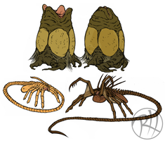 Facehugger and Eggs by Predaguy