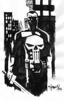 The Punisher by mytymark