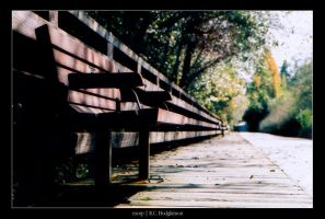 Bench by exorp