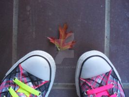 My Converse And A Leaf by Kassieh