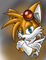 Sonic Boom: Tails by Tails-McCloud