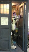 MC 2014: Furry in Tardis! by BlueWaterRose