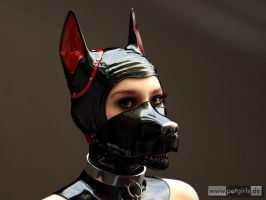 Puppy (Var.II) by My-Rho