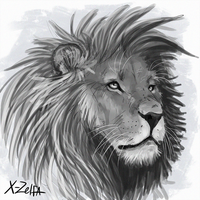 Lion head_sketch by X-Zelfa
