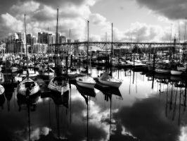 Caml before the storm - BW by BoxersFracture