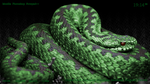 The Serpent Rainmeter Skin by ColdDamage
