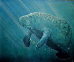 Majestic Manatee by Crimsonlily434