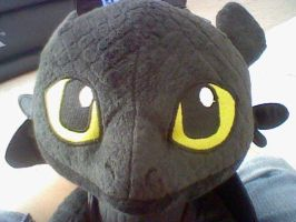 Toothless, one of my birthday presents! :D by Angelgirl10