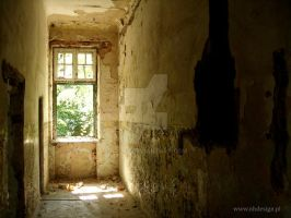Abandoned Psychiatric Hospital... by nales