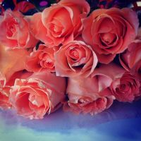 Anniversary Gifts by Alrine21XE