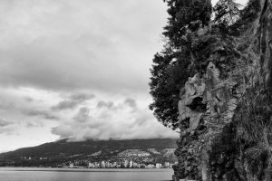 Stanley Park by ShariEspinosa