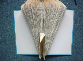 Folded Book: Peacock by FoldedBookshop