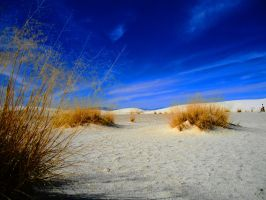 White Sands National Momument by SharPhotography