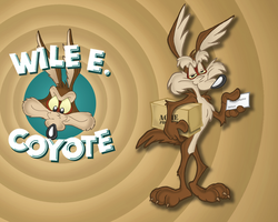 Wile E. Coyote Wallpaper by E-122-Psi