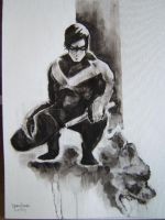nightwing by dtjones