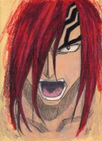 I Pick Renji by ManderFFA
