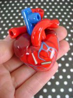 Red Anatomical Heart Ornament by monsterkookies