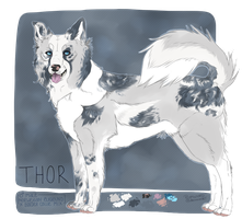 Thor for Vaiil by plumwined