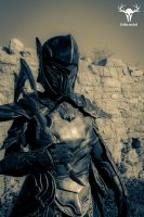 Skyrim Ebony Armor - cosplay photo No. 6 by Folkenstal