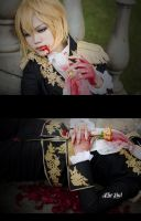 Bloody Pince by AsumiChan