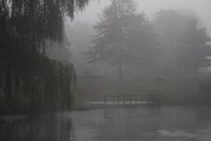 Misty Lake III by webworm