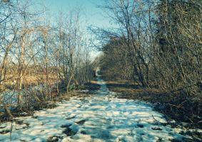 Island Park II - The Frozen Trail by nowhere-usa