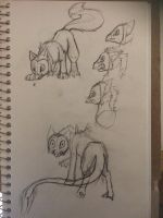 New species sketches by AshesAndWings