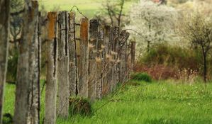 Fence by paully93