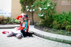 Catfood Miku - In the Garden by Midnight-Dare-Angel