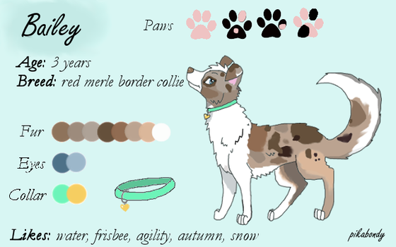 Bailey -reference sheet- by pikabondy